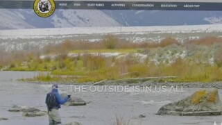 This Week in Fish and Wildlife: FWP streamlines website for easy access