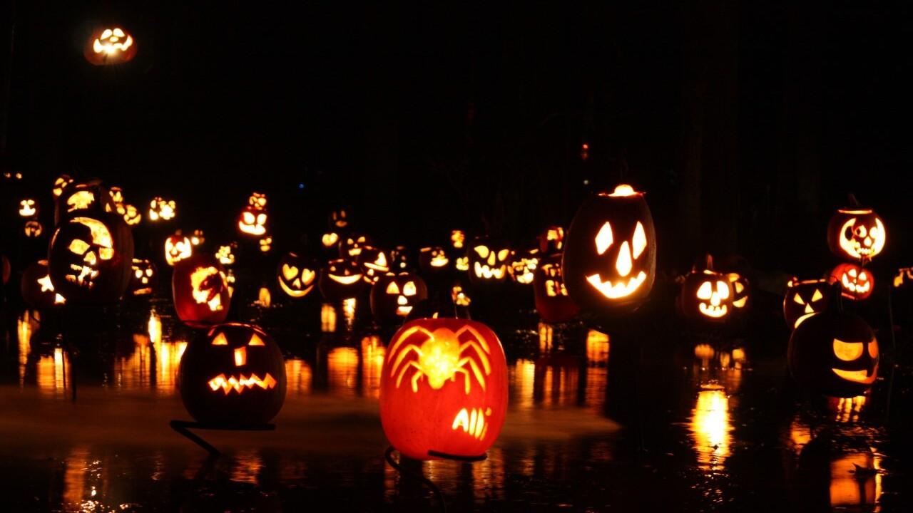 Carlisle Reservation Halloween Fair 2020 Lorain Metroparks turns into spooktacular trail at night