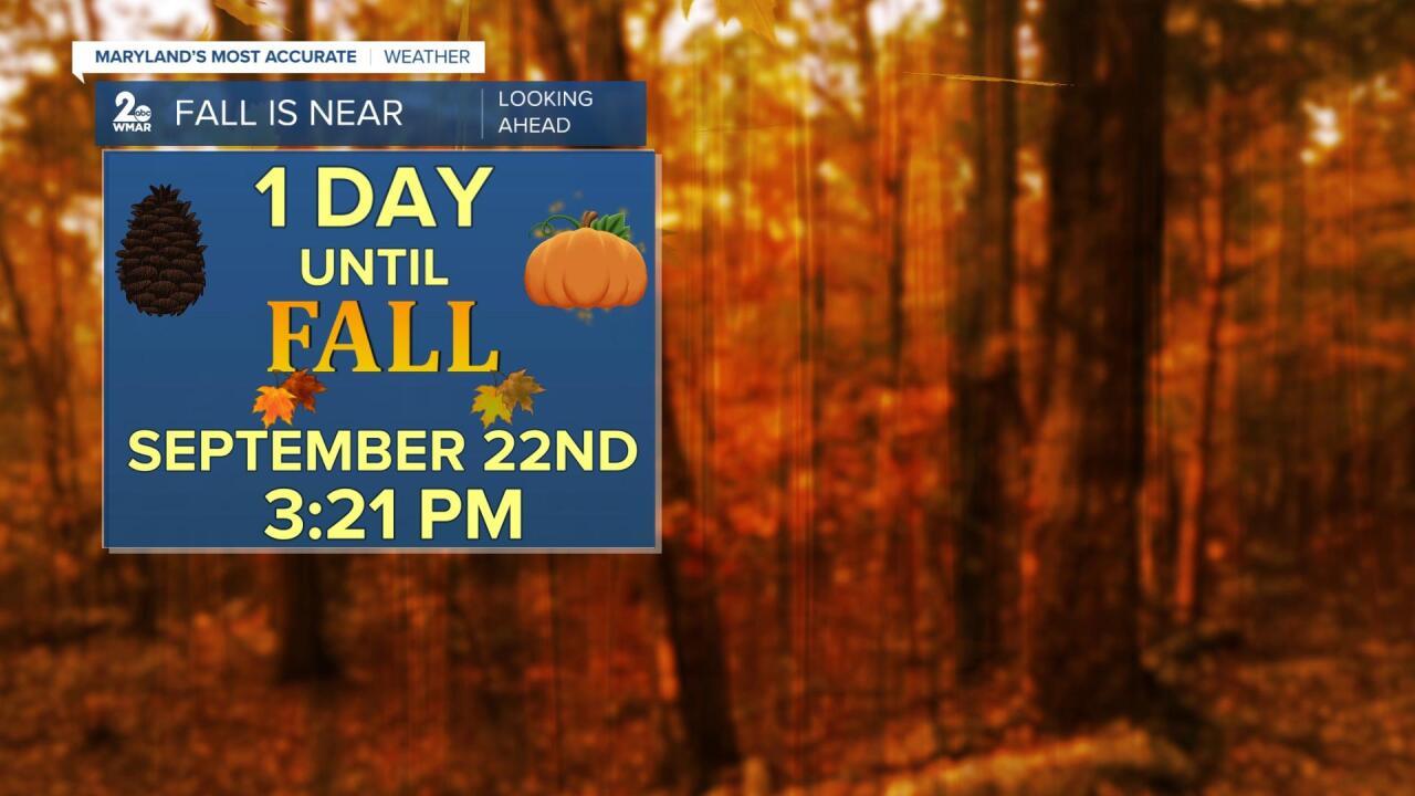 Fall Is Near.jpg