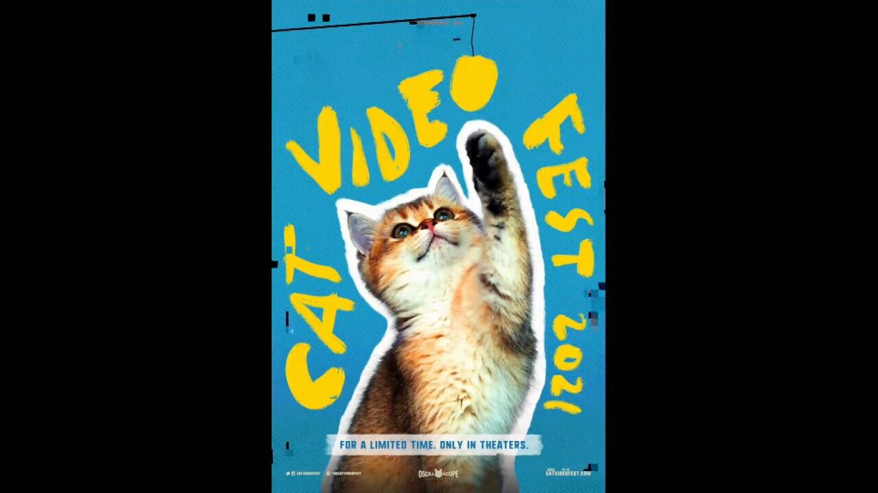 072521 CAT VID POSTER.jpg