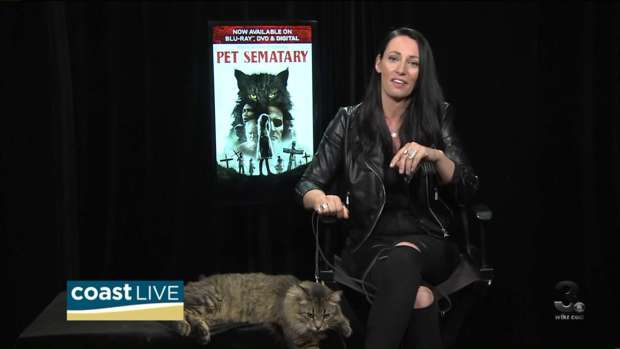 """Cat training and care tips from the animal trainer behind """"Pet Sematary"""" on CoastLive"""