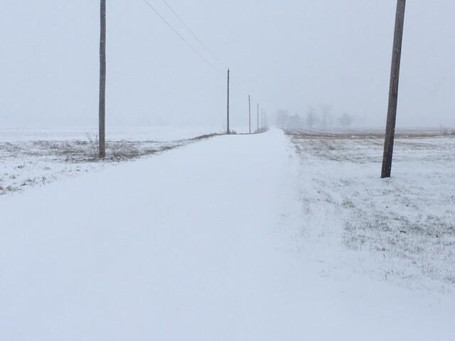January 12 Snow (3).JPG