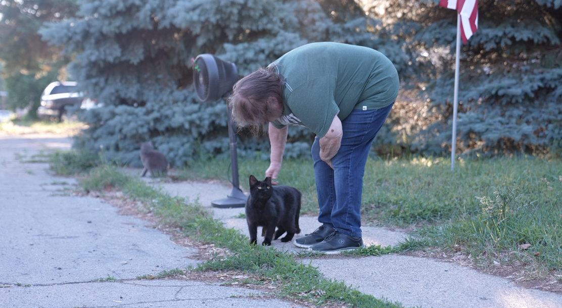 Community members and cats