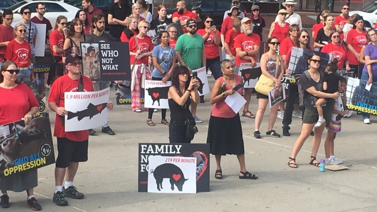 Alliance gathers to march for animal rights