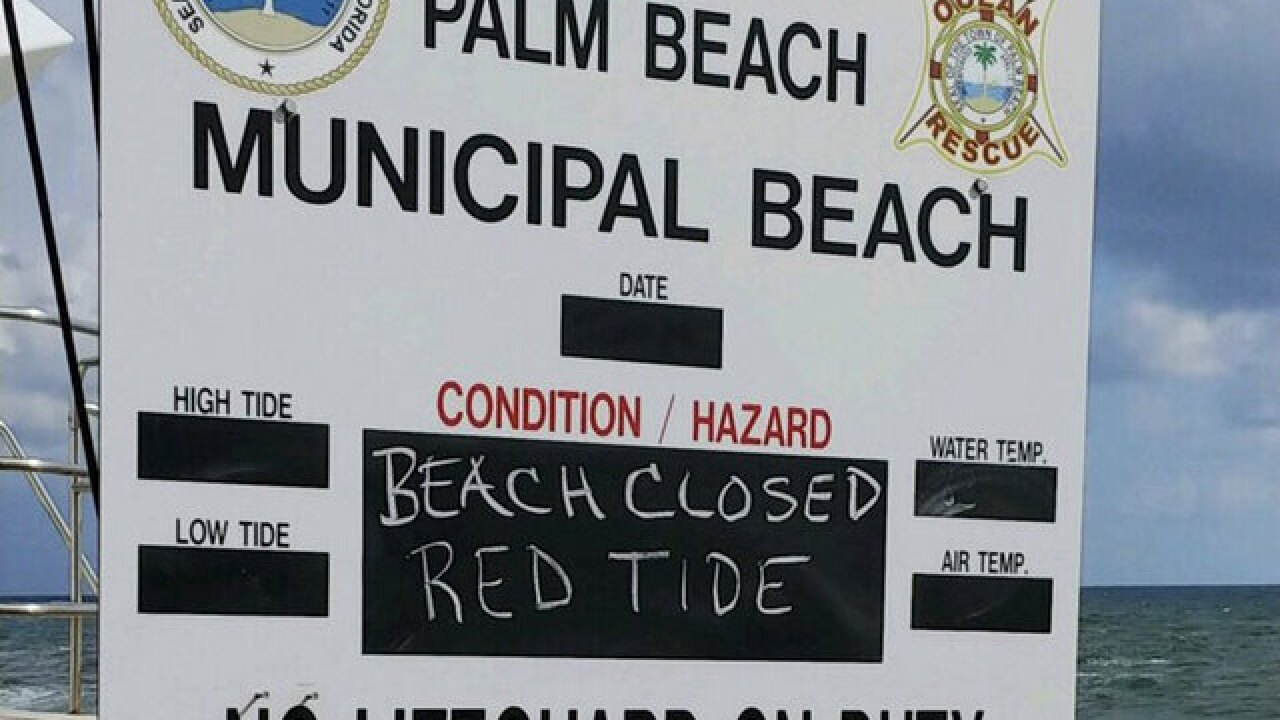 Police: Beaches closed in Jupiter