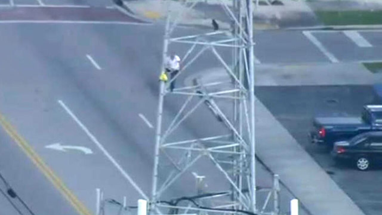Man climbs down after reaching top of 222-foot cellphone tower in Hialeah