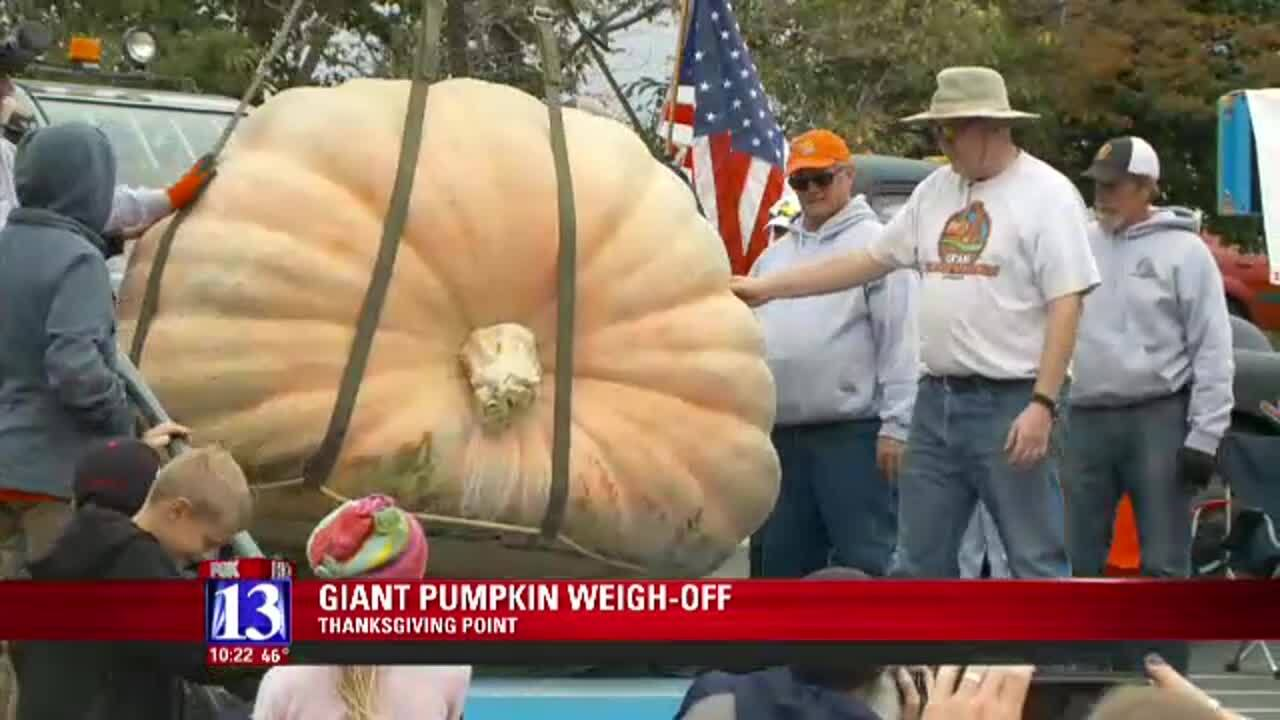 13th annual giant pumpkin 'weigh-off' held at Thanksgiving Point