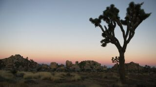 National Parks Threatened As Government Shutdown Continues