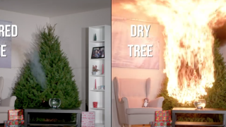 Nearly 160 fires per year started by Christmas trees, report claims