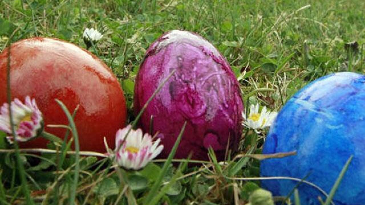 Easter egg hunts and events around San Diego