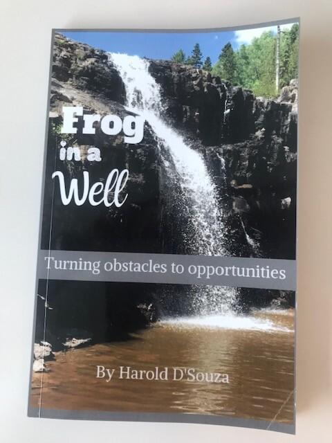 Harold_DSouza_book_cover.jpg