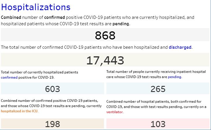 VA hospitalizations.PNG