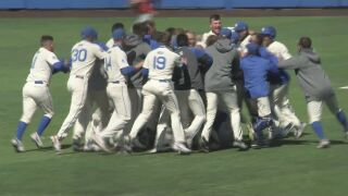 Air Force baseball off to an under-the-radar hot start