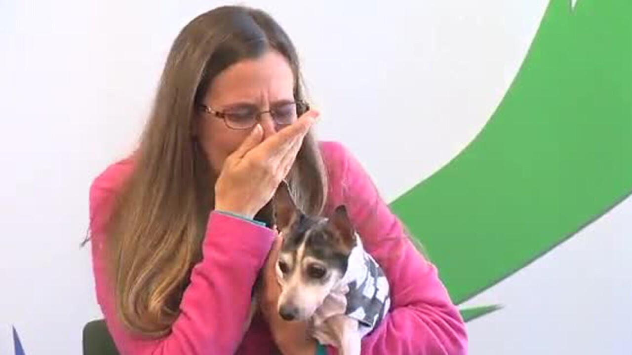 This Florida woman lost her dog in 2007. She finally reunited her when she turned up in Pittsburgh