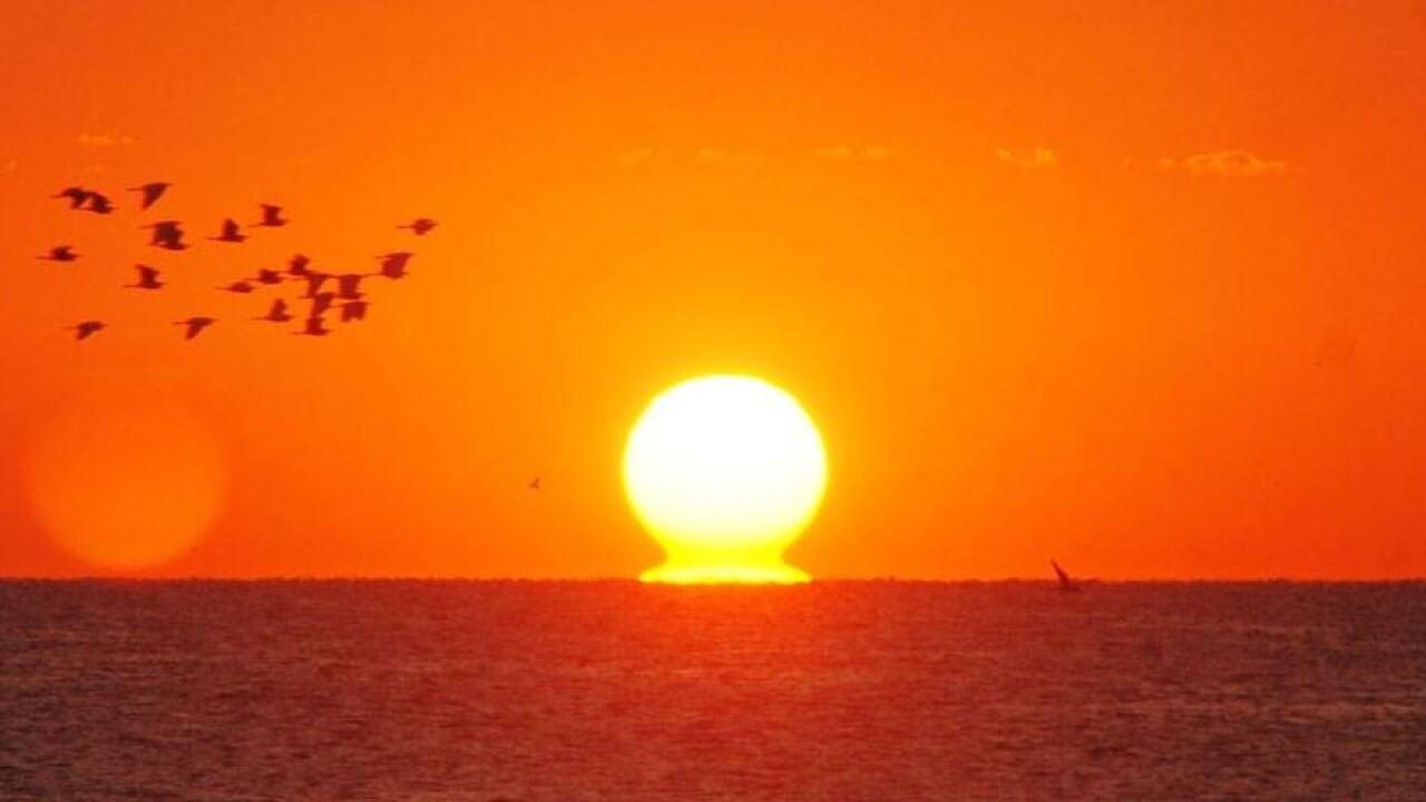sunshineandheat7815.JPG