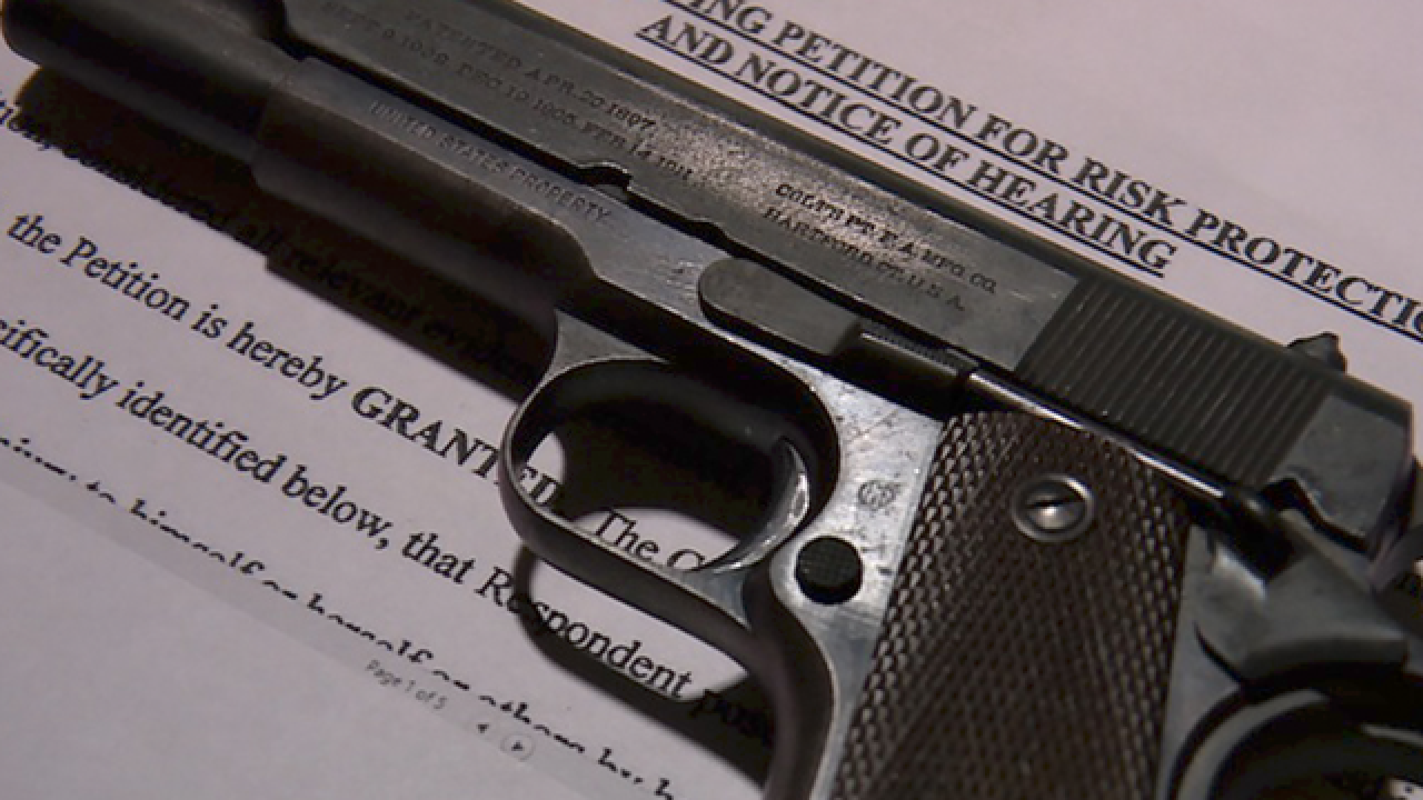 More Than 450 People In Florida Ordered To Surrender Guns Months
