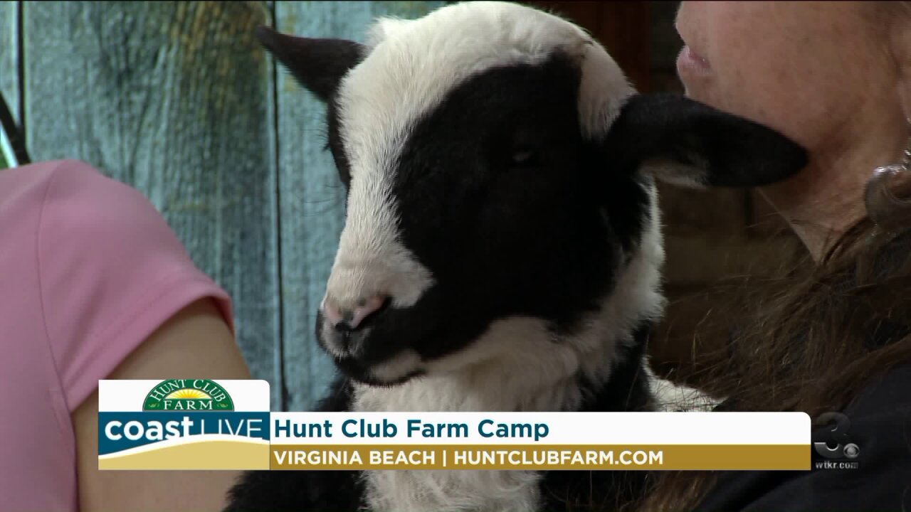 Learning about baby animals and Hunt Club Farm's summer camp on CoastLive