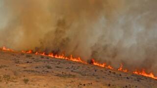 File Photo: Turkey Farm Road Fire