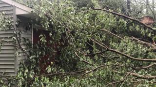 Second Possible Tornado in NNK Katie Dixon 2.png