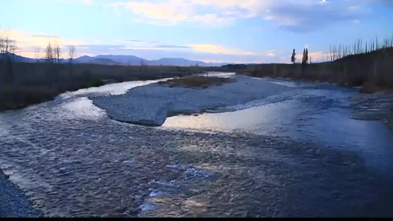 Flathead River.jpg