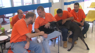 DCCC inmates with their assigned dogs.