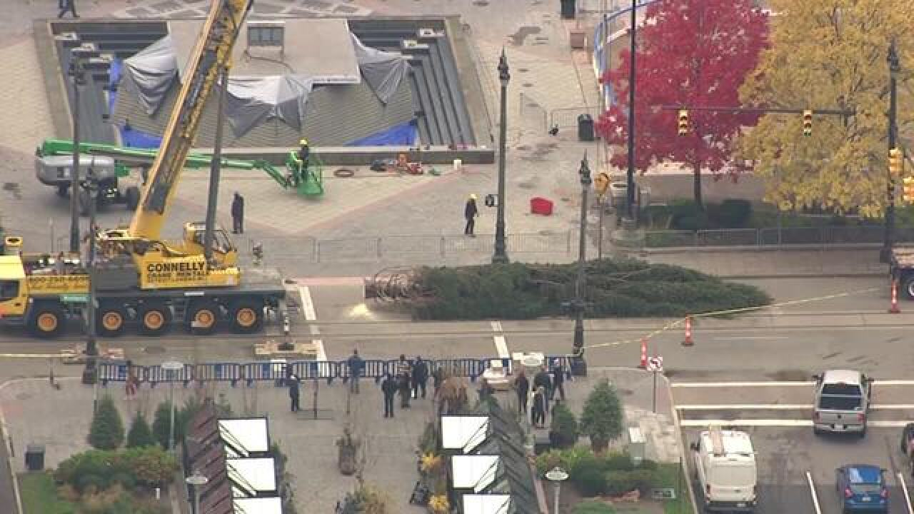Detroit Christmas tree arrives at Campus Martius