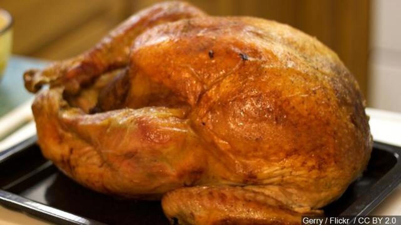 1 death linked to turkey salmonella outbreak