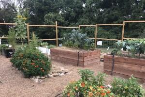 harvesters garden.JPG