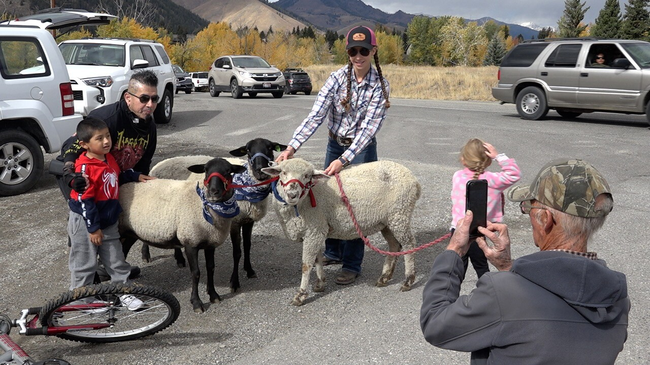 People get pictures with Darby Northcott and her sheep
