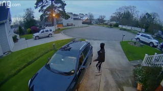 Bayview Burglar.png