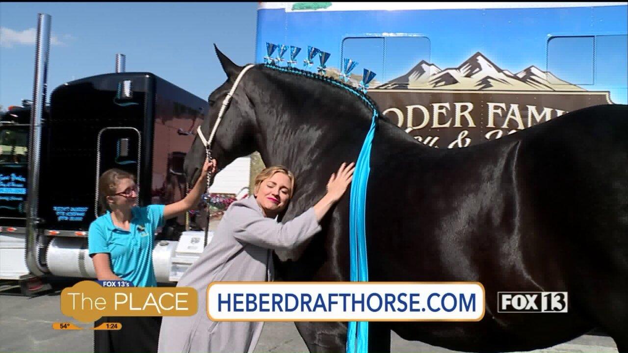 Heber Valley Horse DraftShow