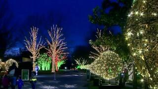 School Patrol: Visiting Cheekwood's Holiday Lights