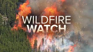 Wildfire Firewatch color pic