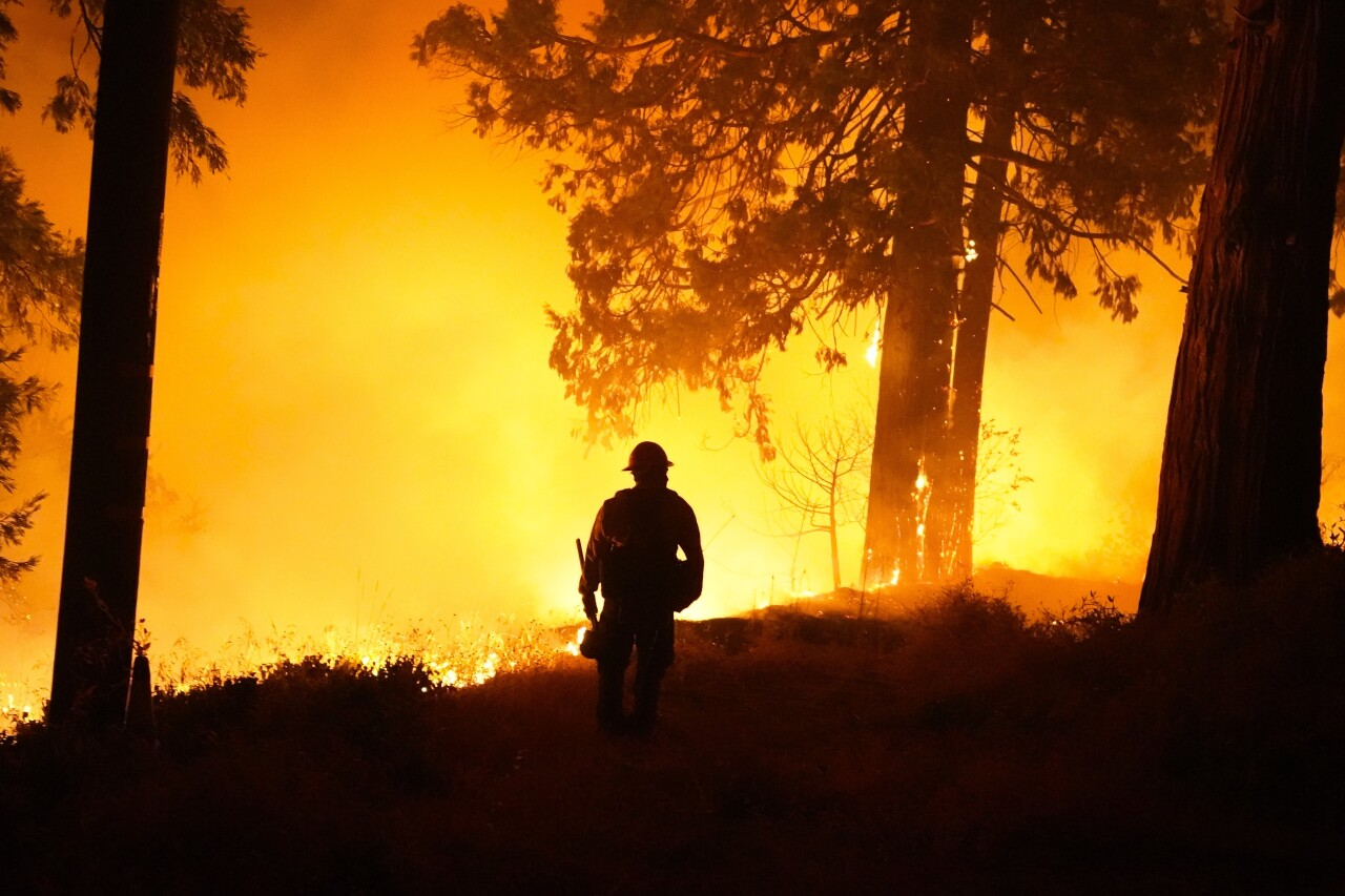 Forest Service closes all national forests in California amid 'historic' fire conditions