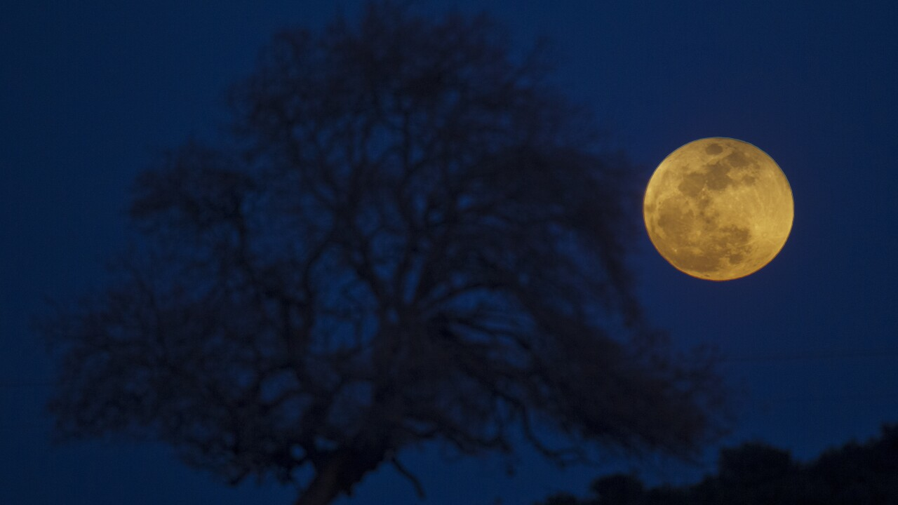 Rare blue moon to light up sky on Halloween