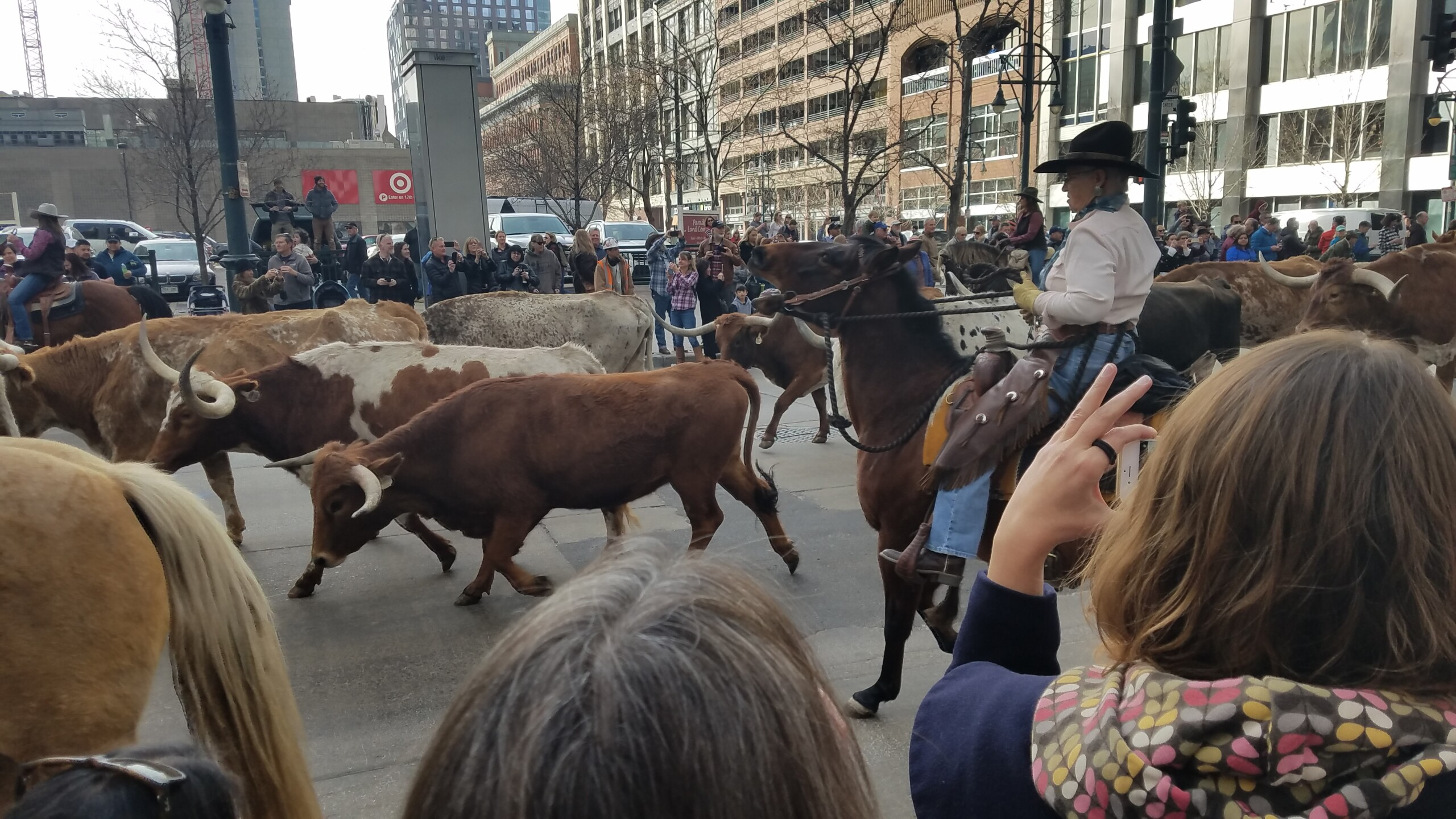 113 National Western Stock Show kick off parade_2.jpg