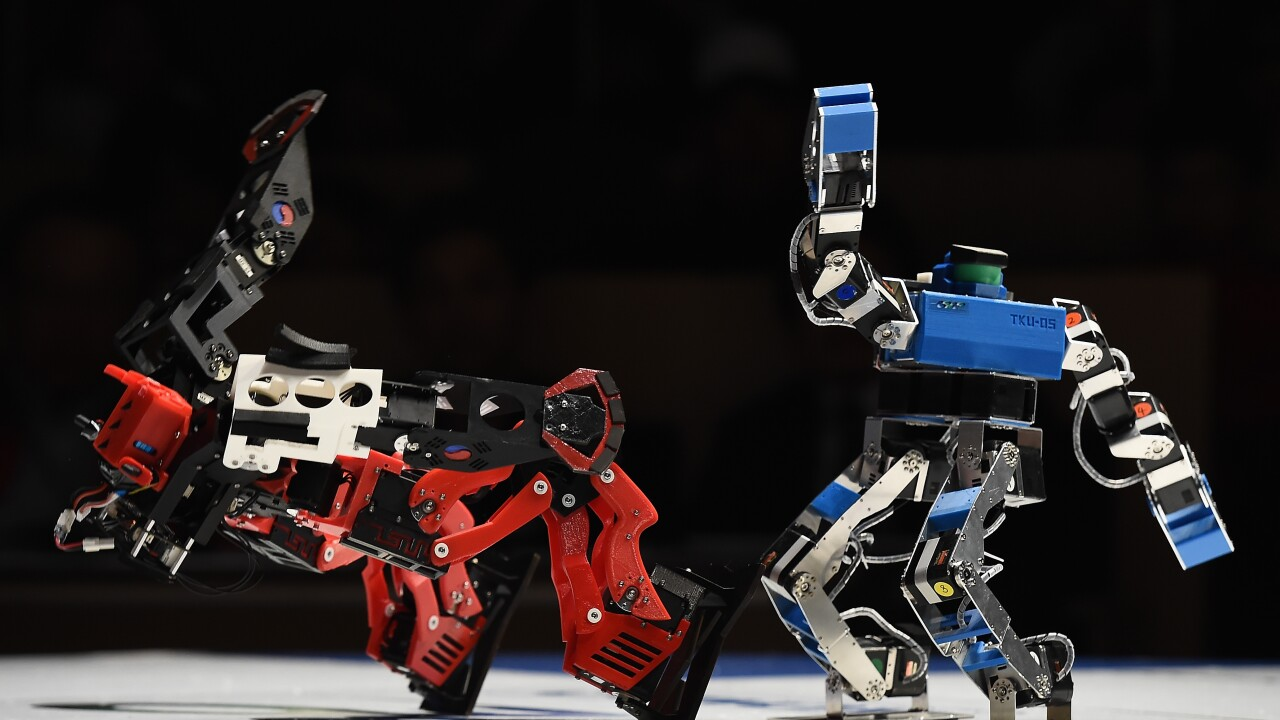 Robots Fight At ROBO-ONE In Tokyo