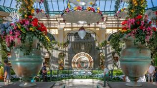 Bellagio Conservatory summer
