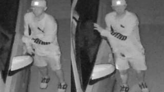 Car burglary suspect 8-19-19.jpg