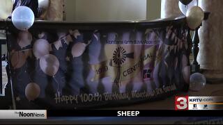 Montana Ag Network: MFBF anniversary; feral pigs