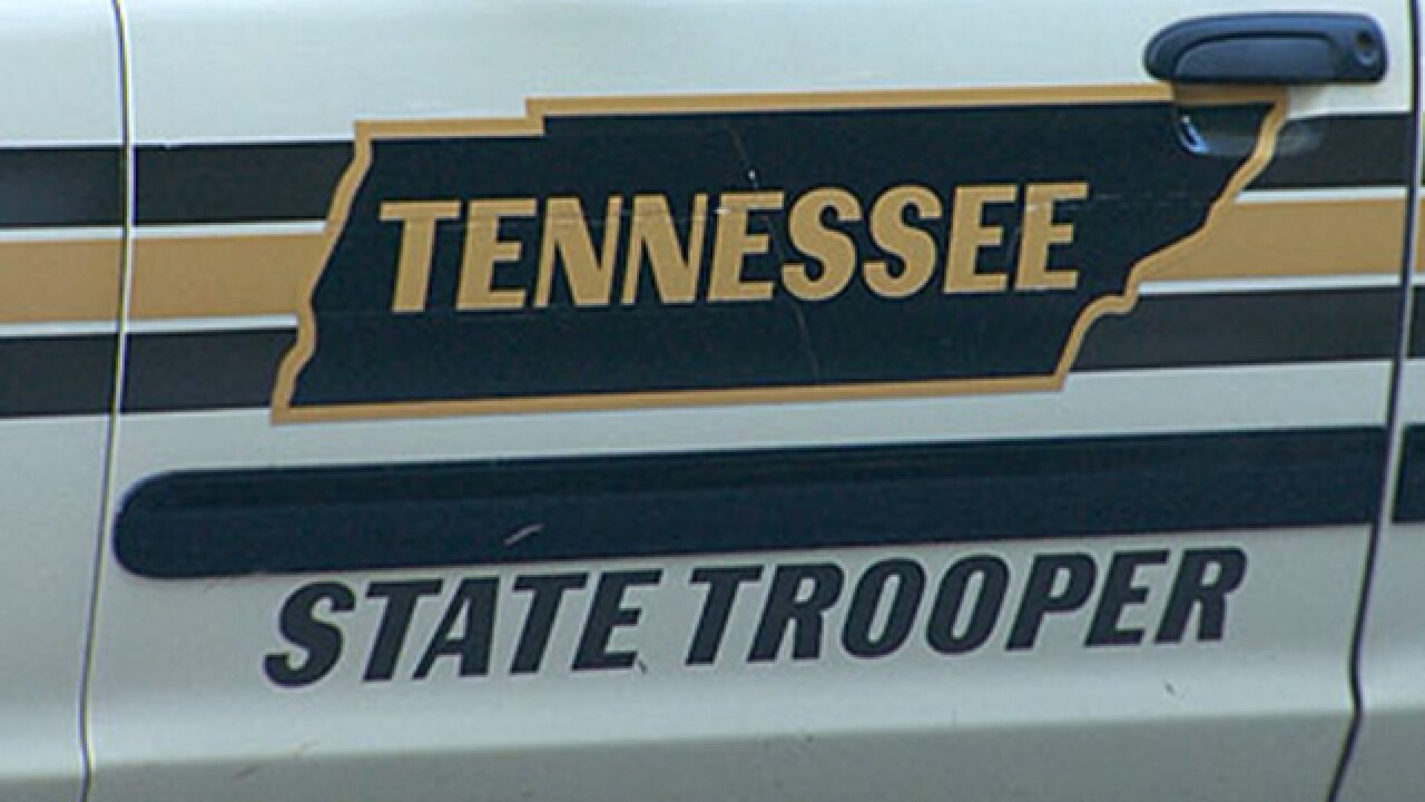 Tennessee Driver Killed By Deer Sent Airborne By Other Car