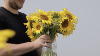 Field of smiles: Farmer plants 2 million sunflowers to give people a break from 2020