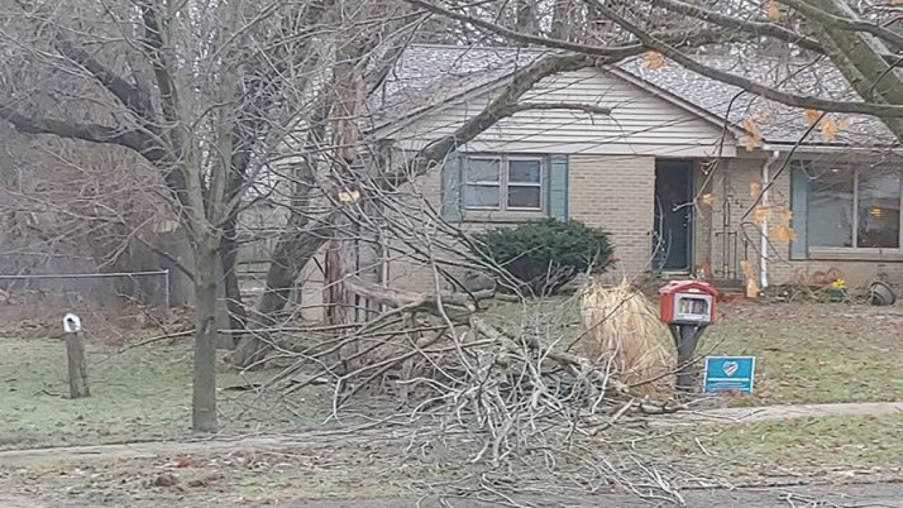 Downed Branches in Cedar Springs - Courtesy Katie McDonald via Facebook.jpg
