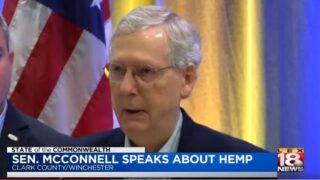 'SOTC': McConnell Trumpets Federal Legalization Of Industrial Hemp At Winchester Facility Visit
