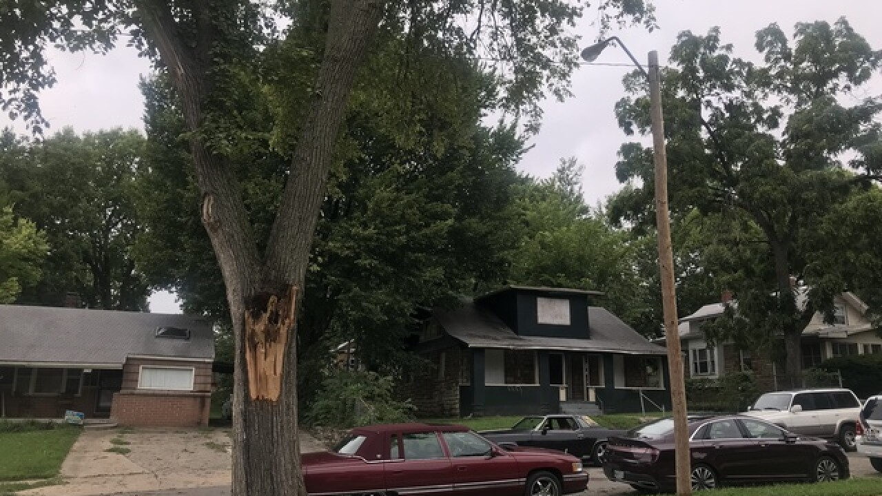 KC tree falls on home after years of complaints