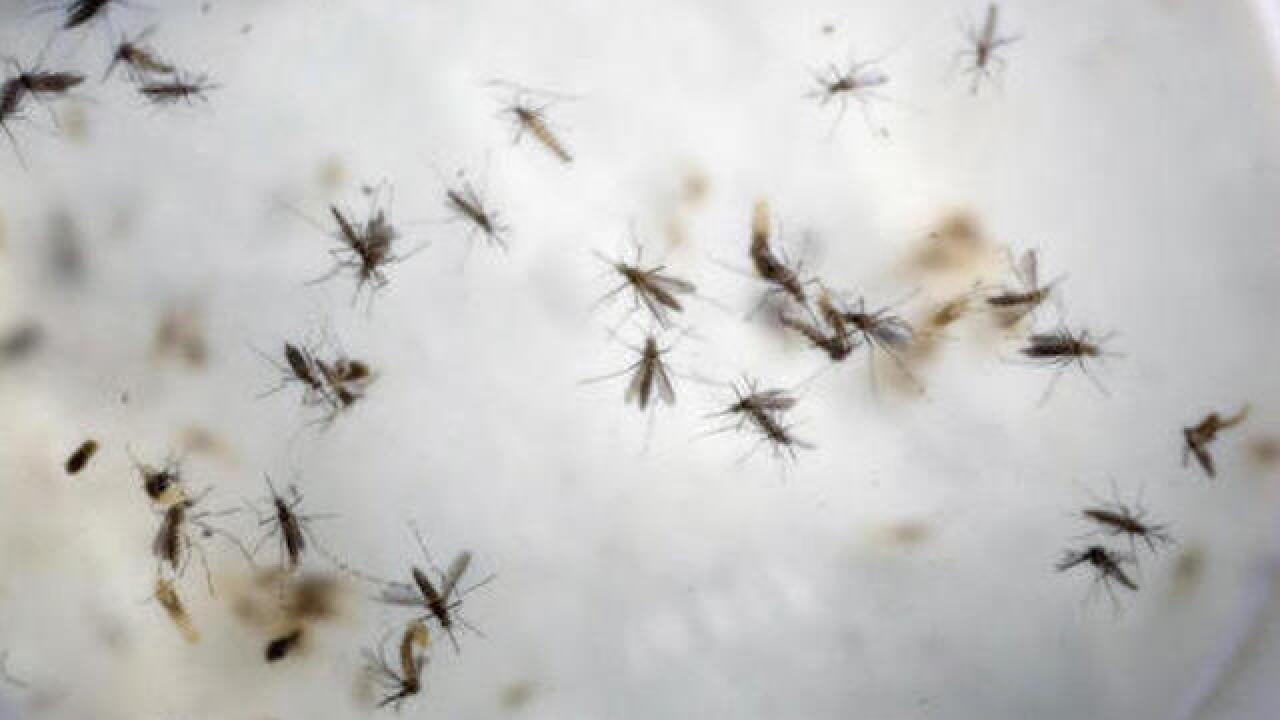 Zika funds: Senate easily advances $1.1B