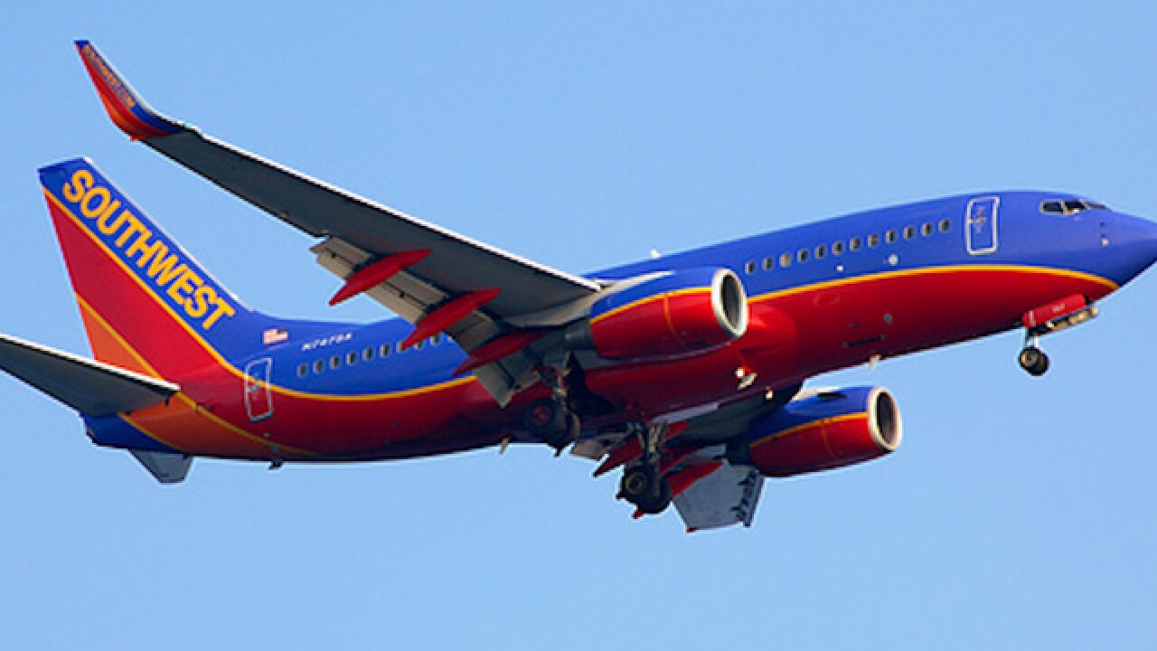 Southwest flight forced to return to Nashville airport after hitting bird