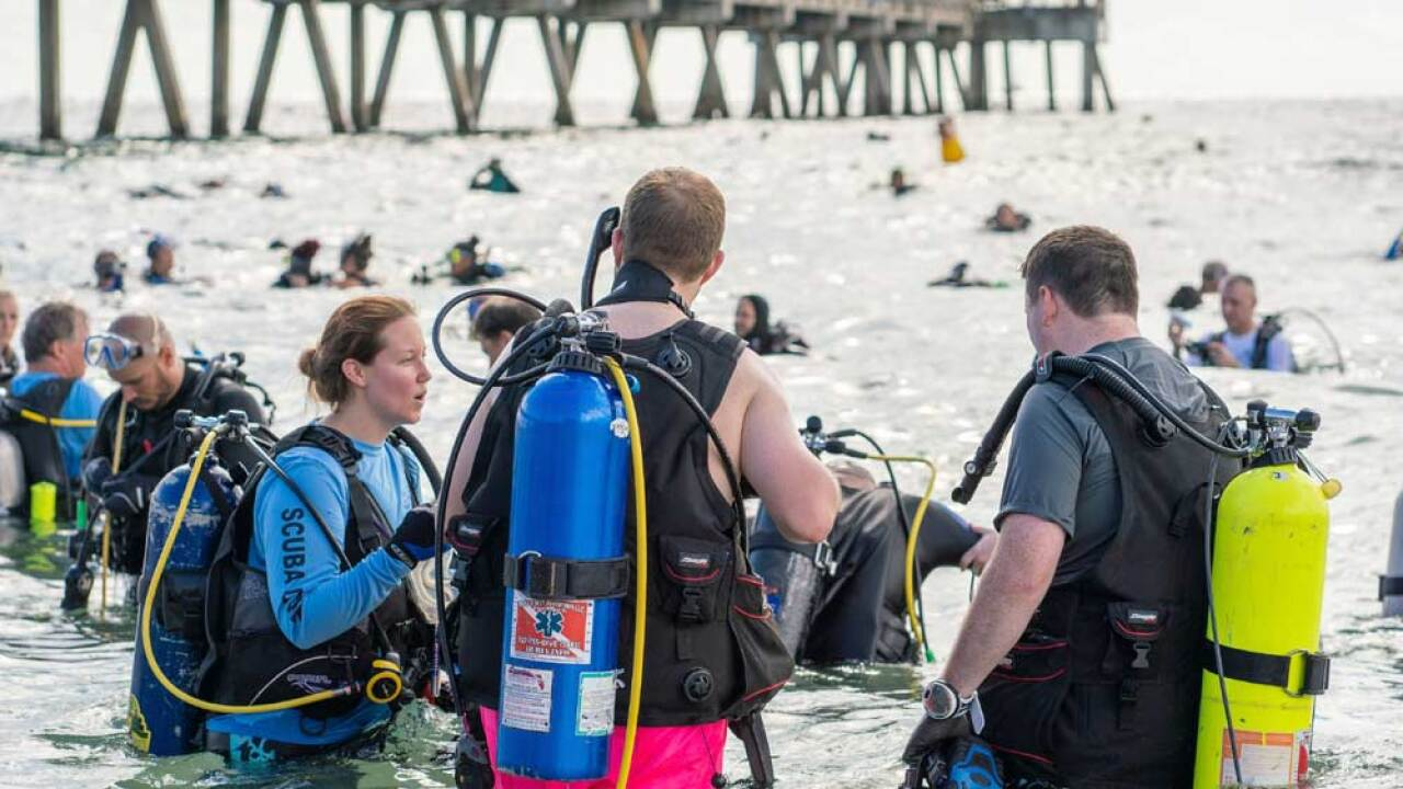 A record-setting 633 divers came from as far as Europe and South America to participate in the underwater cleanup.