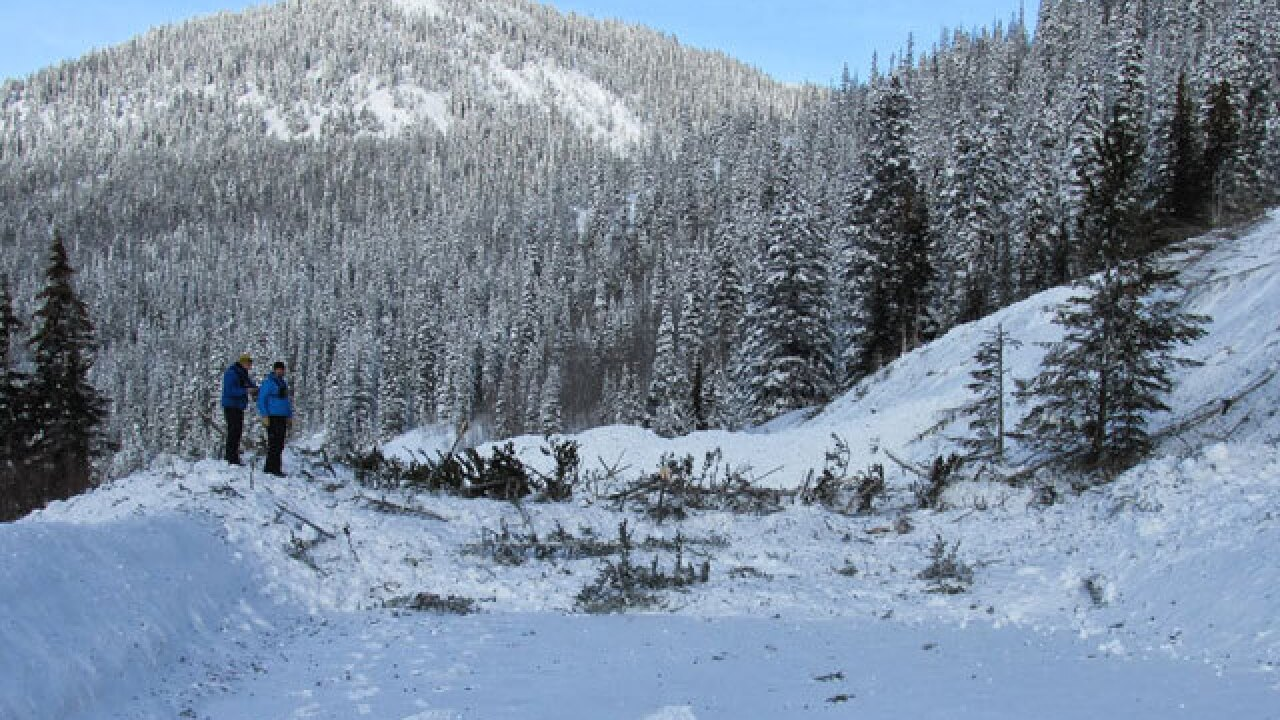 Recall issued for 20,000 avalanche beacons