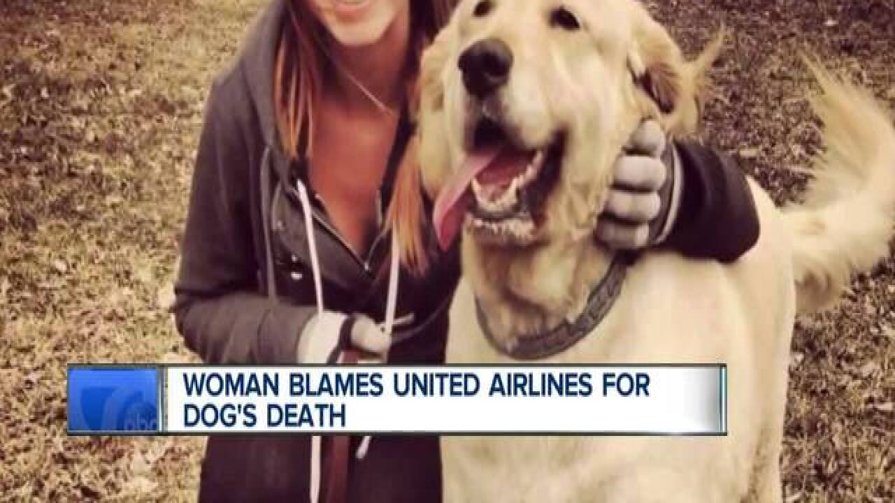 united airlines dog death